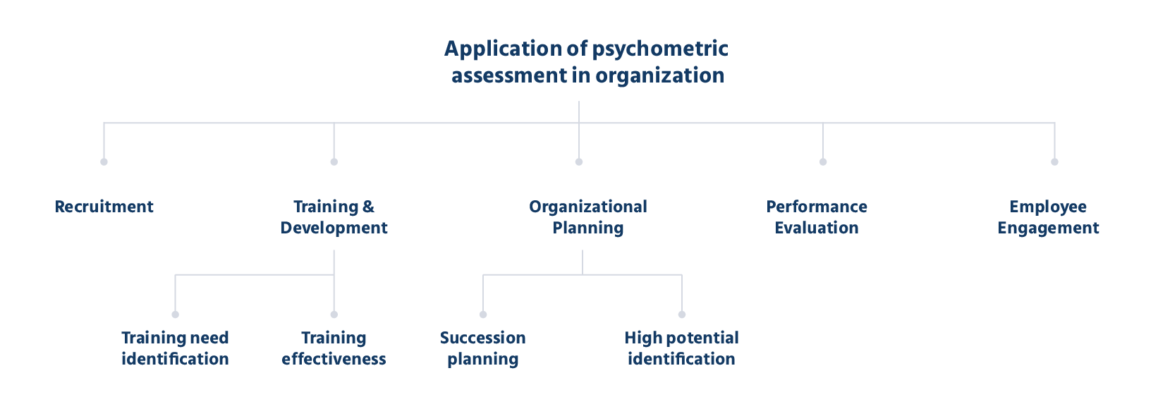 Psychometric Tests Applications in an Organizations