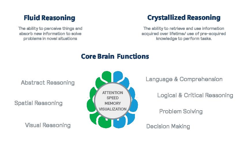 fluid reasoning, crystallized reasoning, and key brain functions