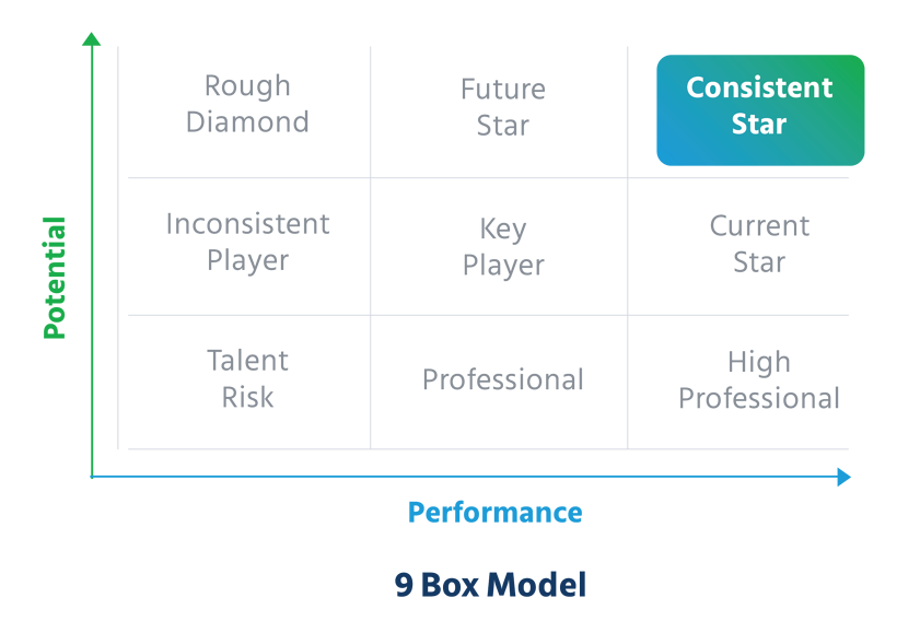 Performance_vs_Potential_9_Box_Model_high_potential_employee_identification_tools_and_process