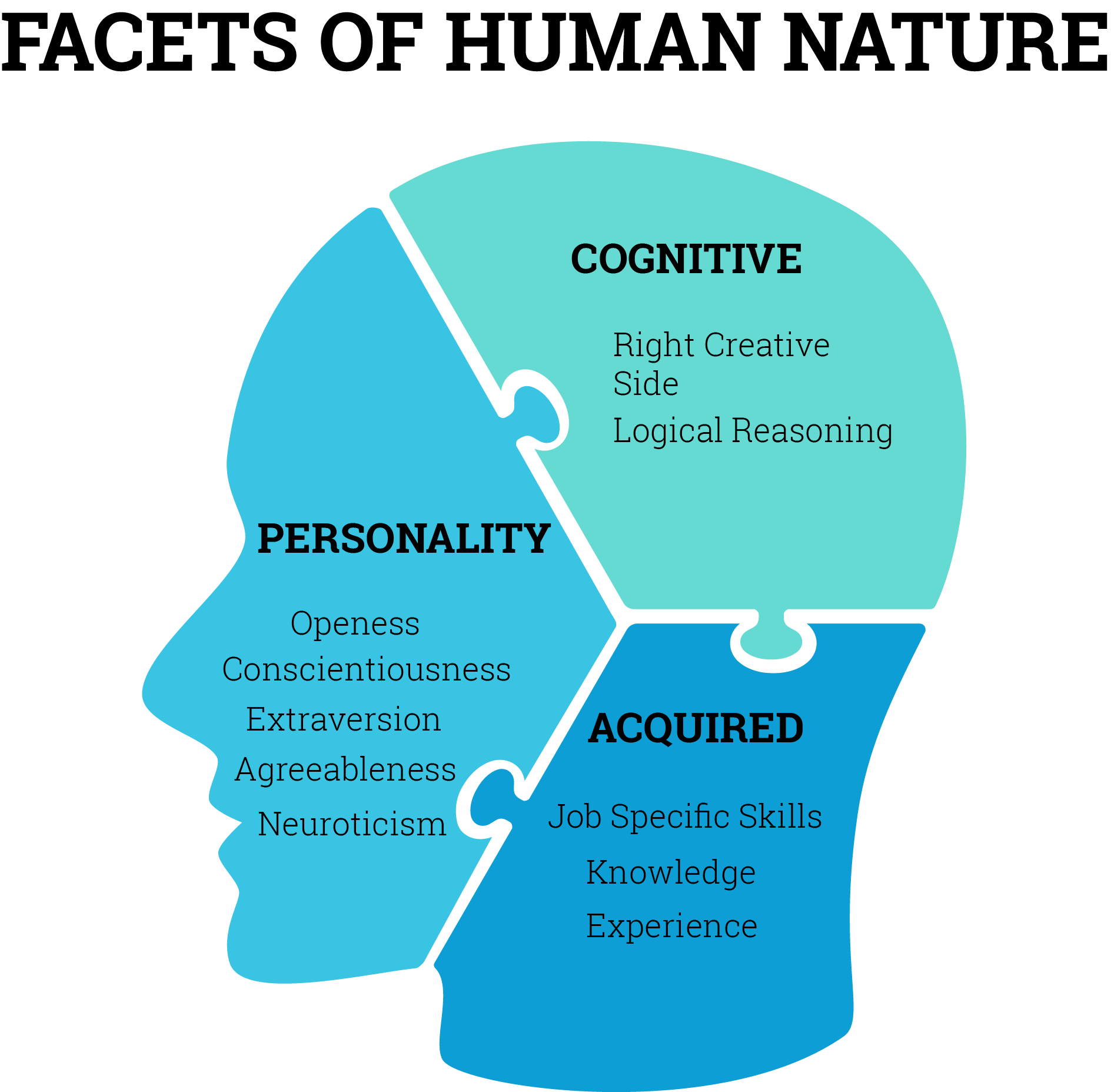 Psychometric Tests: Facets of Human Nature