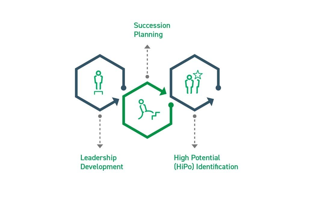Organizational Planning - Leadership, Succession Planning, High Potential Identification