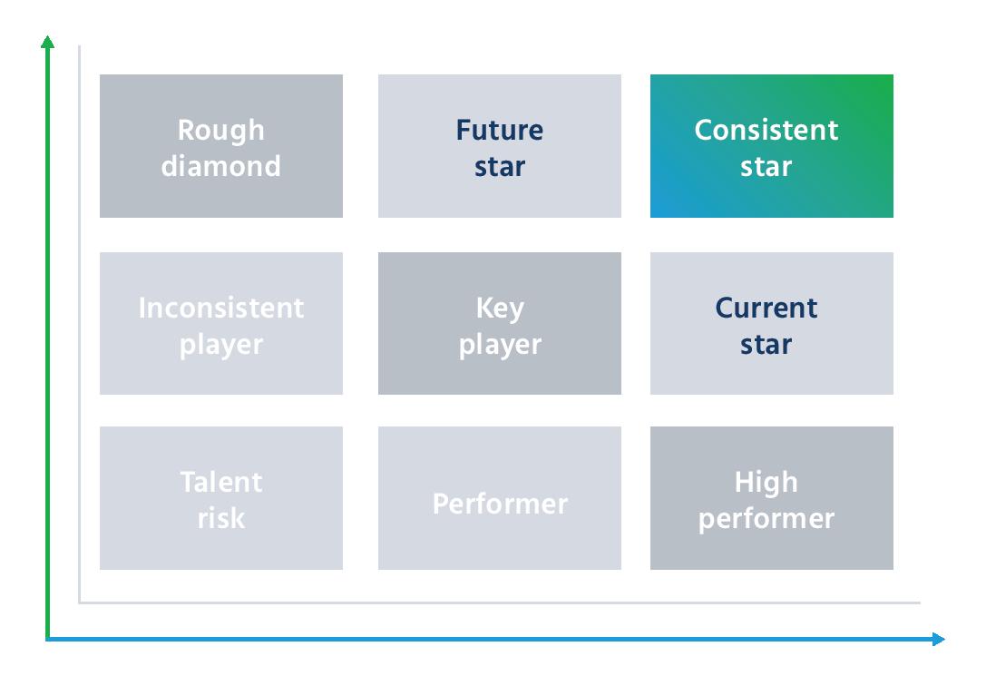 performance vs potential matrix, 9-box model